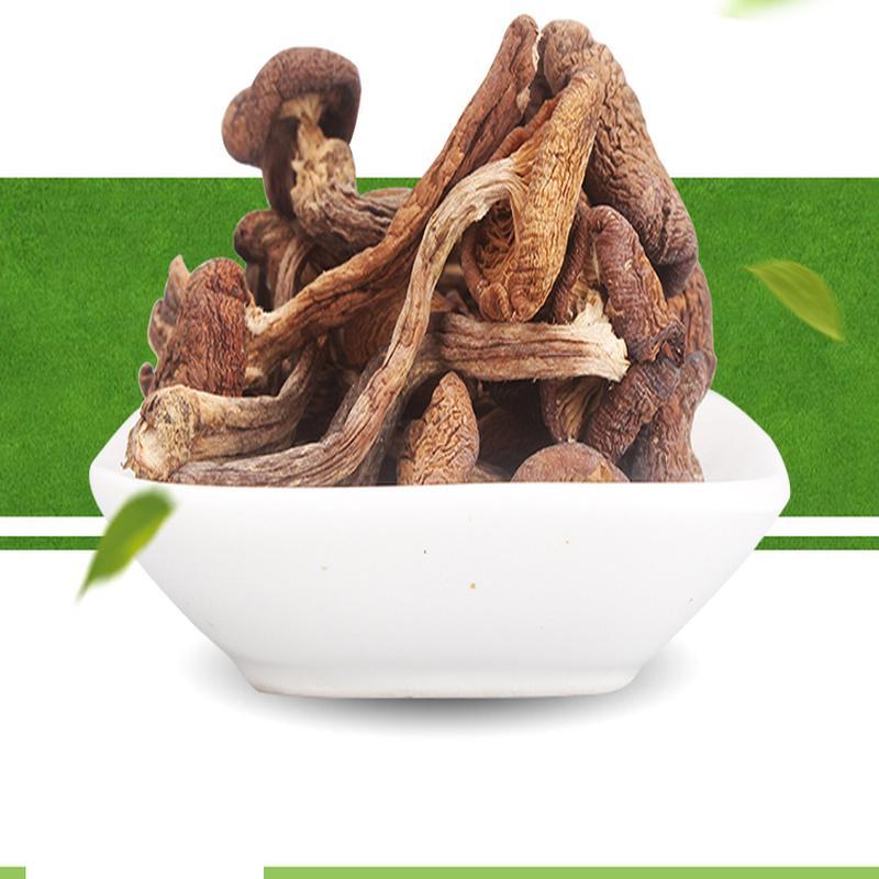 东北蘑菇 黑龙江黑河特产小鸡炖蘑菇 大兴安岭榛蘑